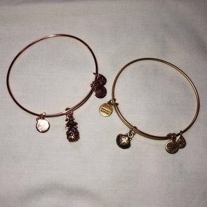 2 Alex and Ani bangle bracelets